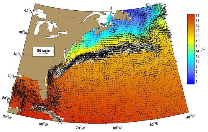 Gulf Stream Rings